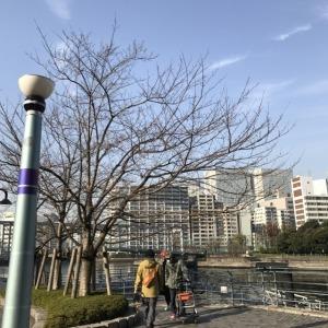 s_蜀咏悄 2017-12-16 9 56 31
